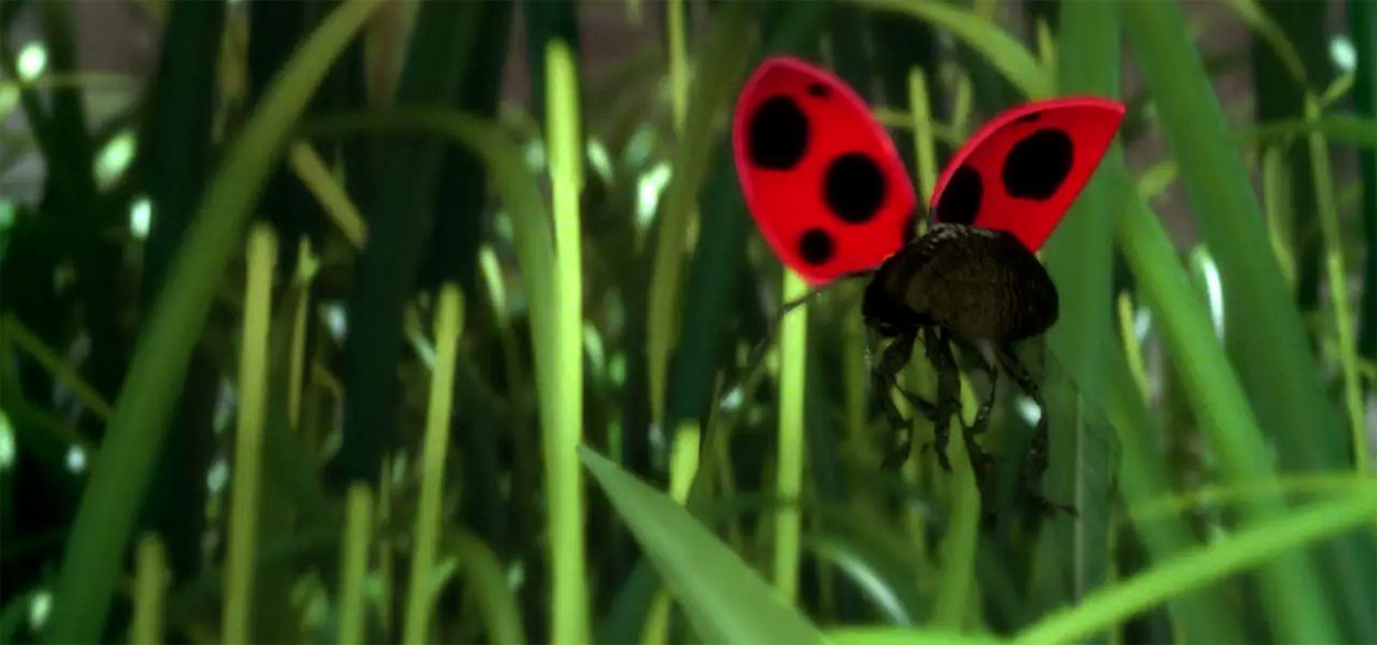 Animation of a ladybug in the grass